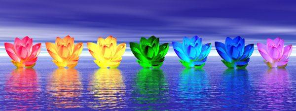 fleurs chakras sur l'eau de nuit